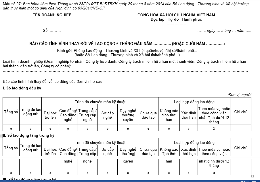 Báo cáo tình hình sử dụng lao động mẫu 07