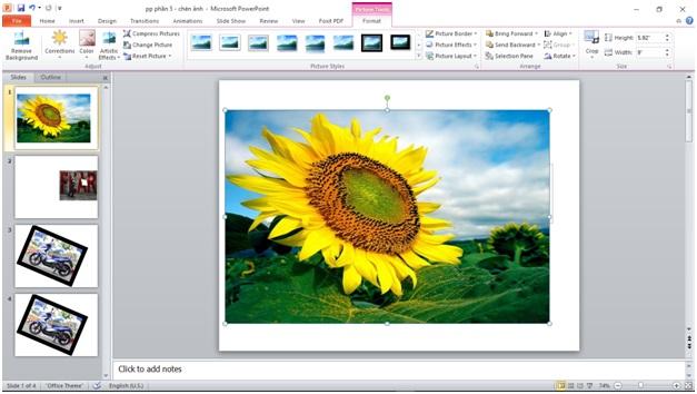 chèn ảnh và clip art vào powerpoint3