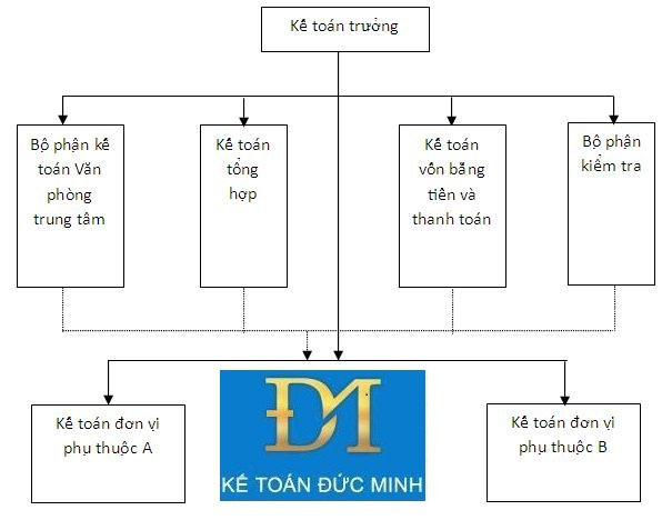 mô hình kế toán hcsn phân tán