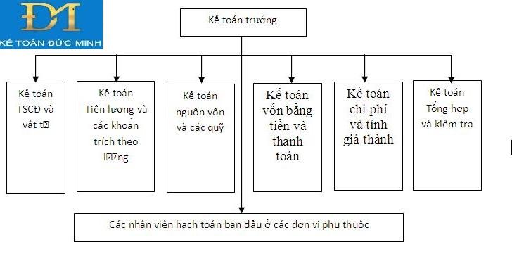 mô hình kế toán hcsn tập trung
