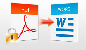Cách chuyển từ PDF sang Word không bị lỗi font chữ