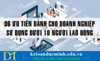 06 ưu tiên dành cho doanh nghiệp sử dụng dưới 10 người lao động - KTĐM