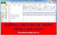 Cứu hỏa: Kế toán không chèn dòng mới trên Excel. Phải làm sao? - Kế toán Đức Minh