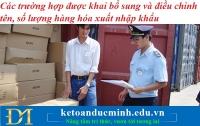 Các trường hợp được khai bổ sung và điều chỉnh tên, số lượng hàng hóa xuất nhập khẩu