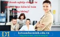Chủ doanh nghiệp công ty tư nhân có được kiêm kế toán trưởng không?