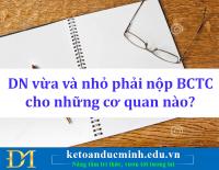 Doanh nghiệp vừa và nhỏ phải nộp BCTC cho những cơ quan nào? Kế toán Đức Minh.