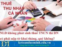NLĐ không phát sinh thuế TNCN thì DN có phải nộp tờ khai tháng, quý không?
