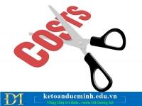 Tối đa hóa lợi nhuận DN cần cắt giảm chi phí nào? Kế toán Đức Minh.