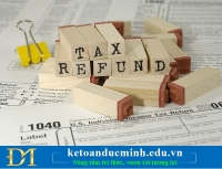 Tra cứu hoàn thuế điện tử như thế nào?