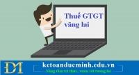Hướng dẫn kê khai thuế GTGT vãng lai chi tiết – Kế toán Đức Minh.