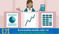 Kế toán Việt Nam nên chọn phần mềm kế toán Việt Nam hay phần mềm kế toán quốc tế?