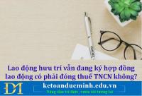 Lao động hưu trí vẫn đang ký hợp đồng lao động có phải đóng thuế TNCN không? - Kế toán Đức Minh.