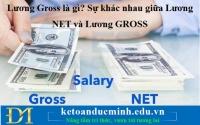 Lương Gross là gì? Sự khác nhau giữa Lương NET và Lương GROSS