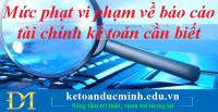 Mức phạt vi phạm về báo cáo tài chính kế toán cần biết - Kế toán Đức Minh