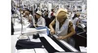 Quy định mới về tuyển dụng và báo cáo tình hình sử dụng lao động