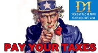 Hướng dẫn một số vướng mắc về khai thuế và khai bổ sung hồ sơ khai thuế (phần 2)
